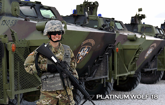 Porter in gear standing in front of military vehicles.