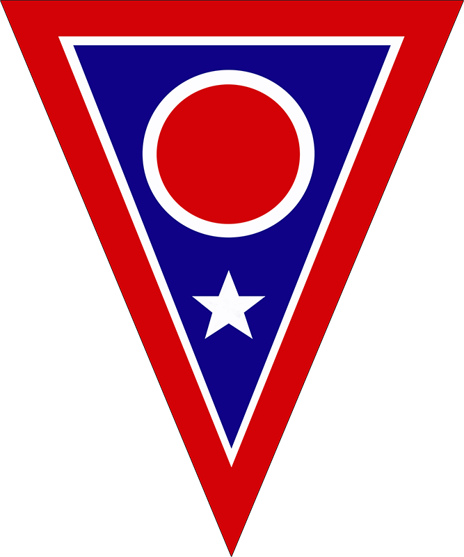 73rd Troop Command patch